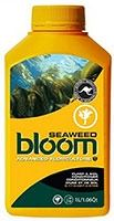 Bloom Seaweed