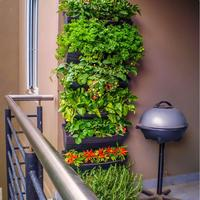 Automatic Wall Garden