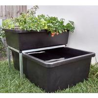 Medium Aquaponics Kit